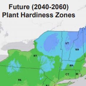Climate Smart Native Plants