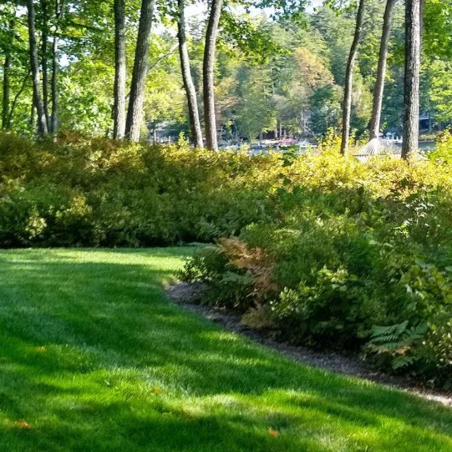 Lake Friendly Lawn Care
