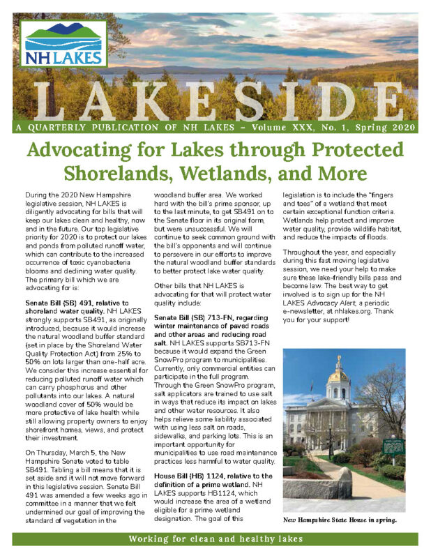 NH LAKES Spring 2020 Lakeside Newsletter