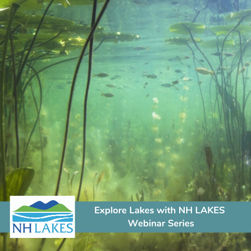The Explore Lakes with NH LAKES Webinar Series