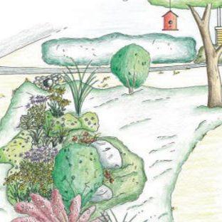 Vegetated Swale