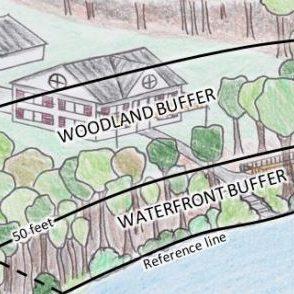 Vegetation Management for Water Quality