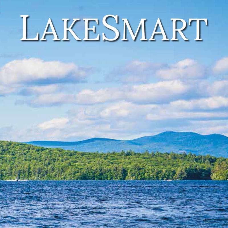 nh lakes lakesmart book 2019
