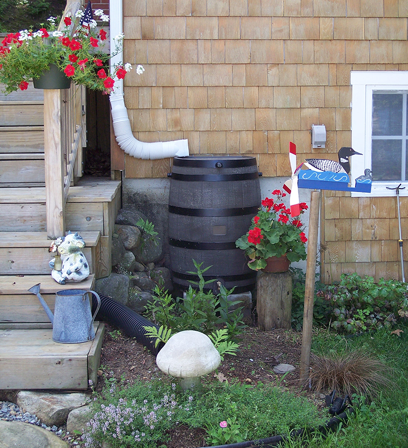 A rain barrel outside a New Hampshire home